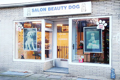 Salon Beauty Dog
